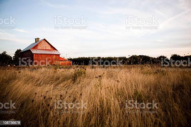Photo of Summer night barn