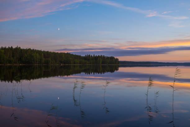 Summer night lake stock photo