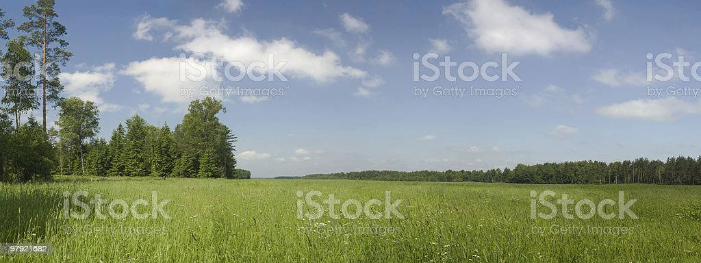 summer panoramic royalty-free stock photo