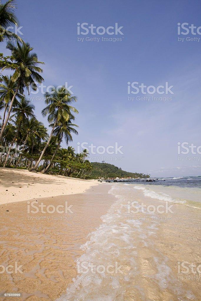 summer paradise landscape royalty-free stock photo