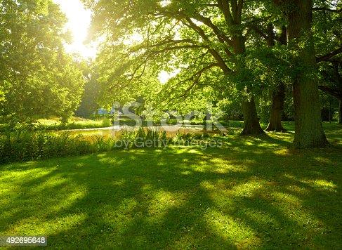 istock Summer park in Hamburg, Germany 492695648