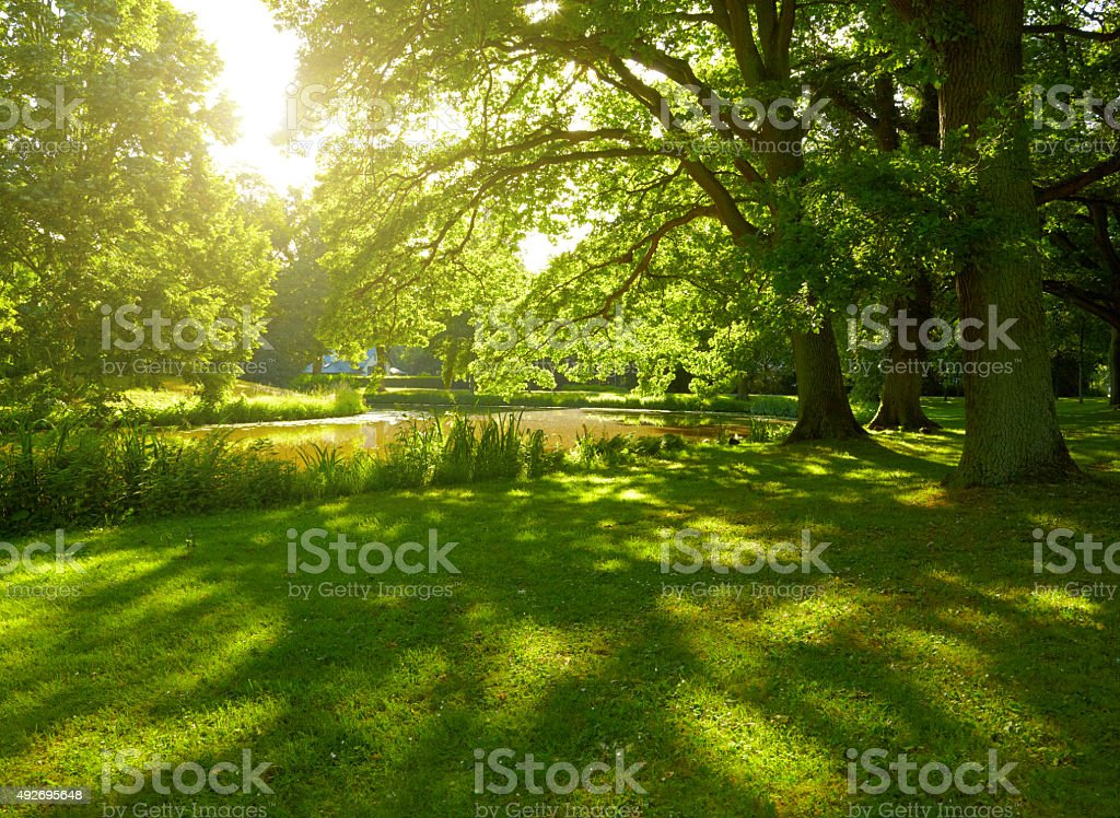 Summer park in Hamburg, Germany stock photo