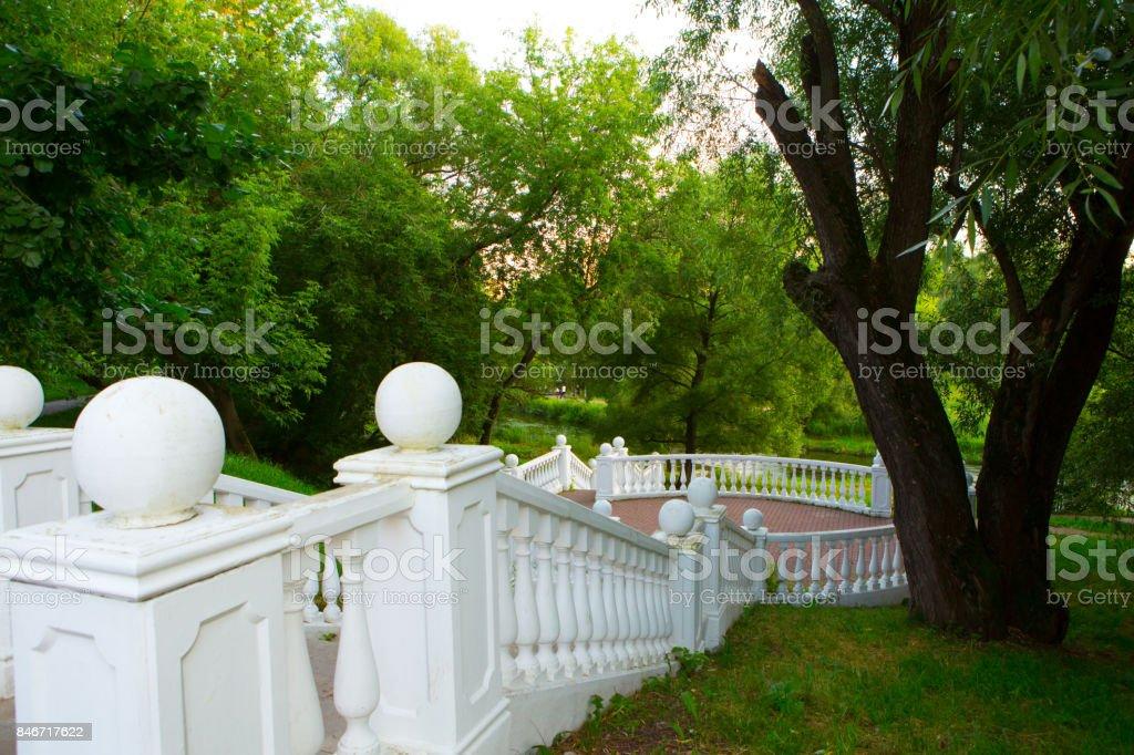 Summer Park stock photo