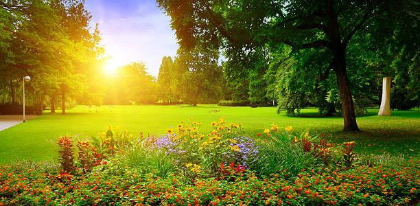 Sommer-park mit schönen Blumenbeeten – Foto