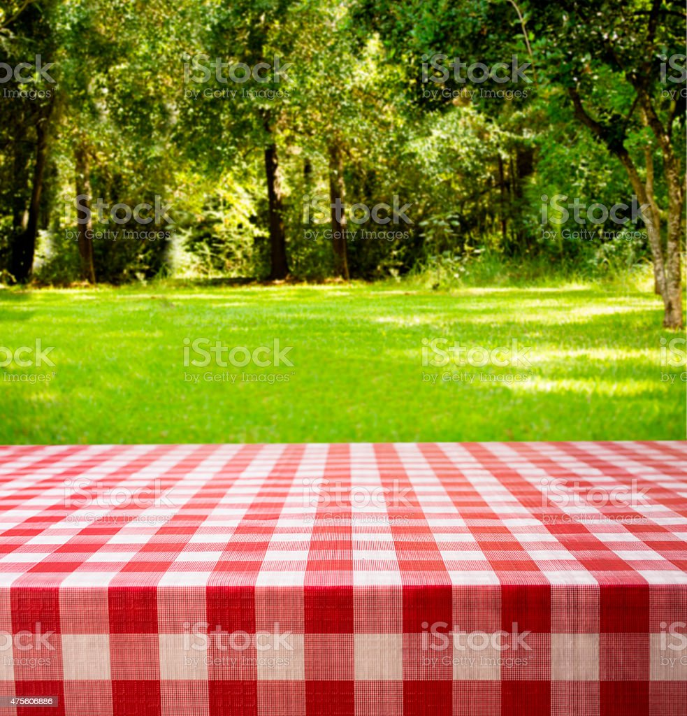 Summer picnic in backyard, park area. Trees, woods, table. stock photo