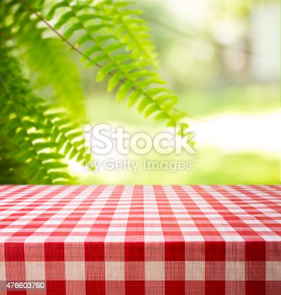 1048926386 istock photo Summer picnic in park area. Fern, checked tablecloth, table. 476603760
