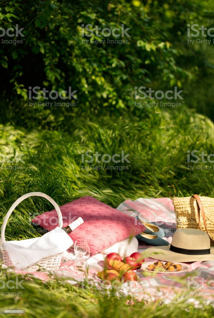 Summer picnic in the forest on the grass. Wine, fruit and croissants. royalty-free stock photo