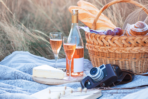 istock Summer - picnic in the meadow 1028690844