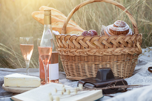 istock Summer - picnic in the meadow 1053417902