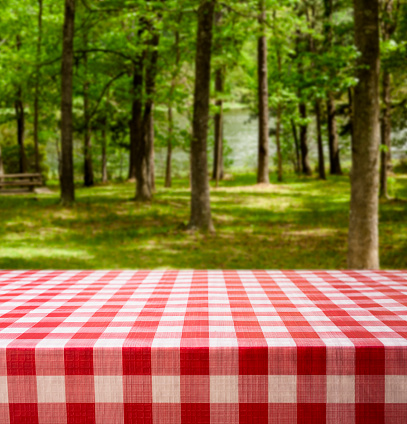 istock Summer picnic table with lake and trees. 613212990
