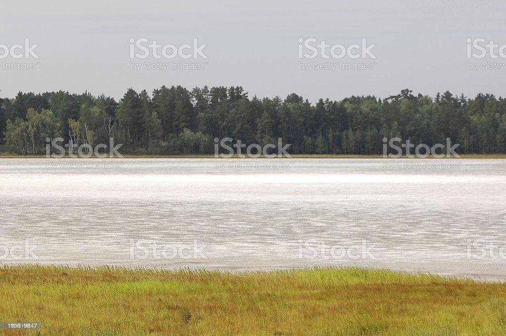 summer royalty-free stock photo