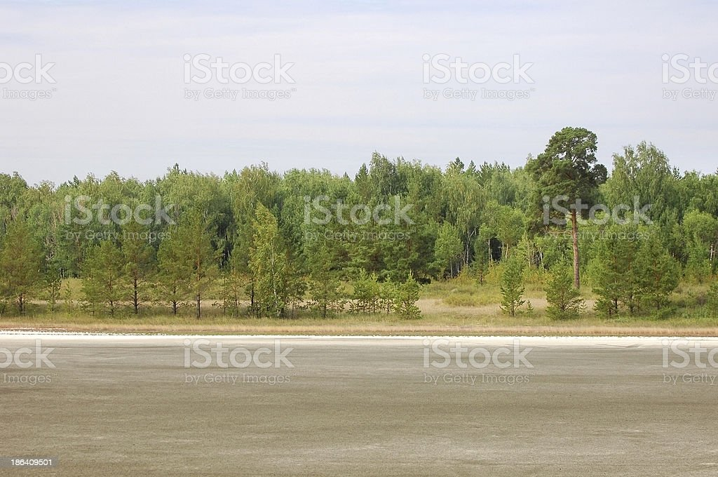 summer. royalty-free stock photo