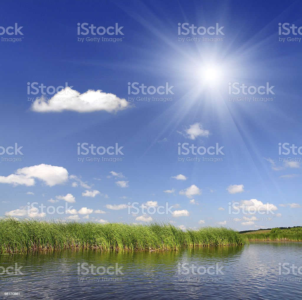 Estate pond foto stock royalty-free