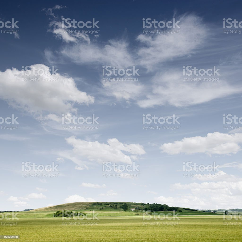 Summer Prairie Landscape royalty-free stock photo