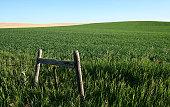 istock Summer Prairie Morning 118302086