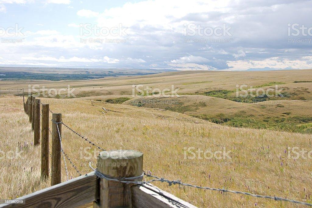 Summer Prairie Scene royalty-free stock photo