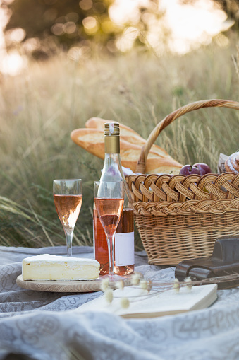 istock Summer - Provencal picnic in the meadow.  baguette, wine, glasses, grapes, Cheese brie, baguette in a basket