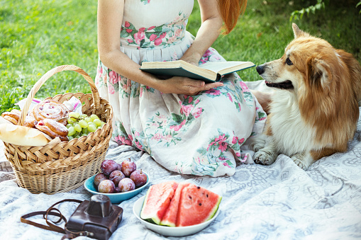 istock Summer - Provencal picnic in the meadow 1028690734