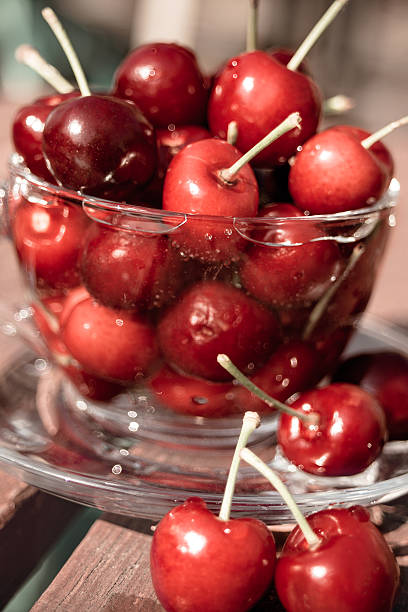 Summer red cherries in a tea cup. stock photo
