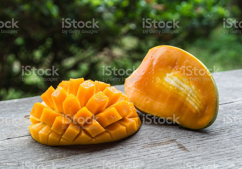 summer refreshment fruit--full fladged juicy mango stock photo