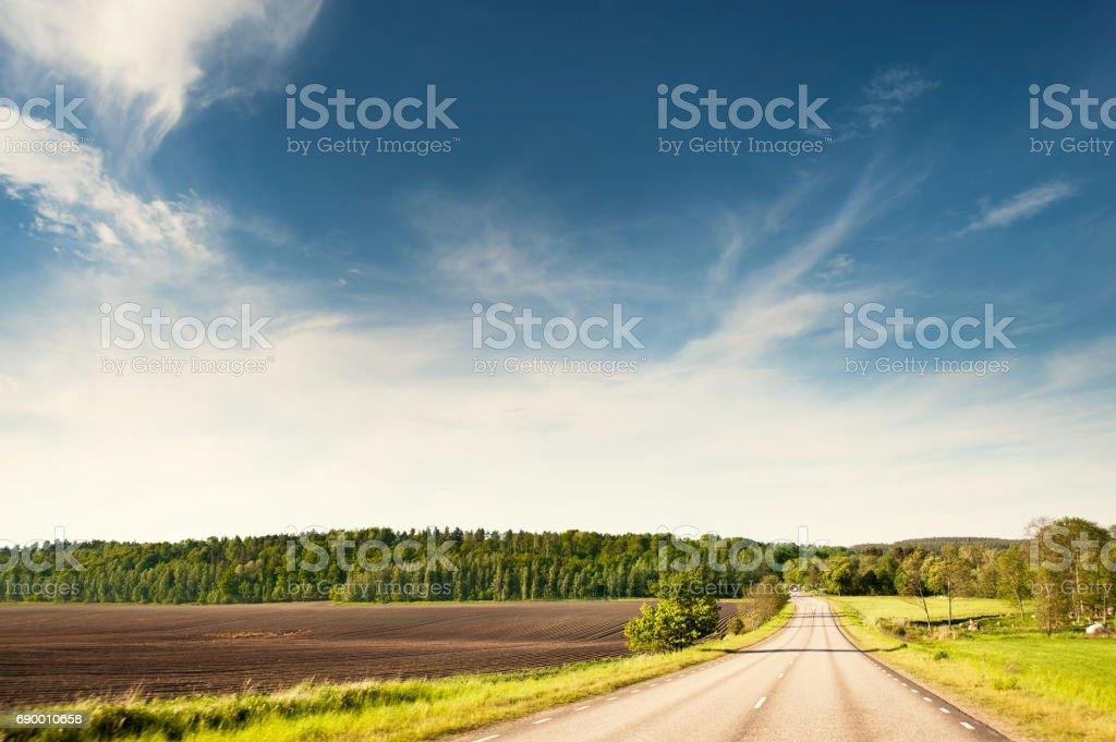 Summer road in sweden stock photo