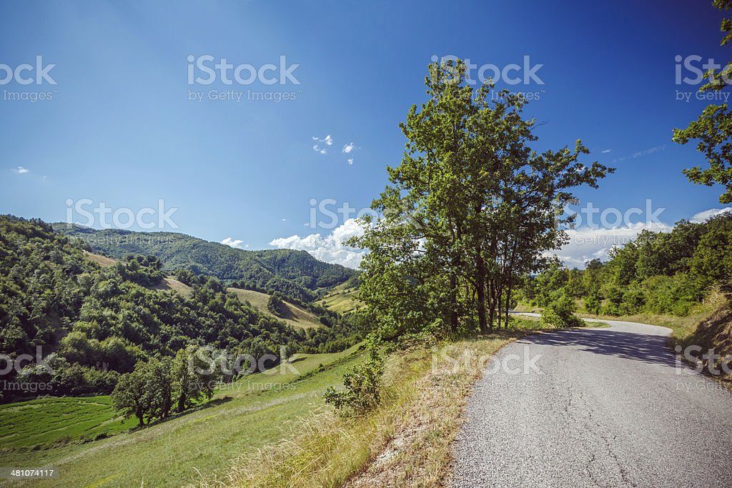 Summer road royalty-free stock photo