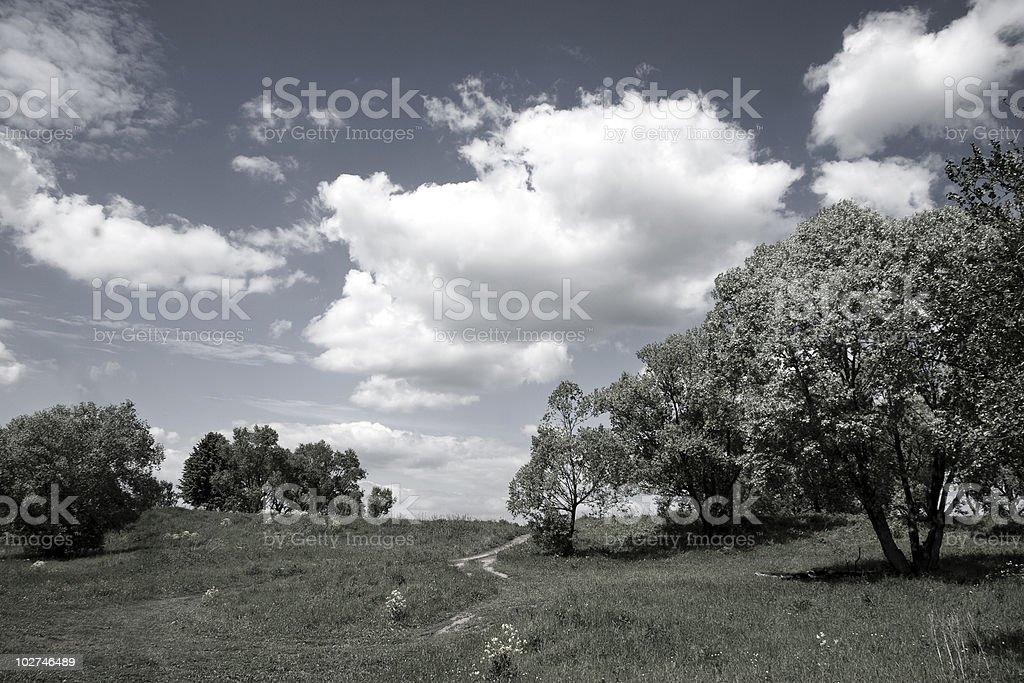 Summer rural landscape stock photo