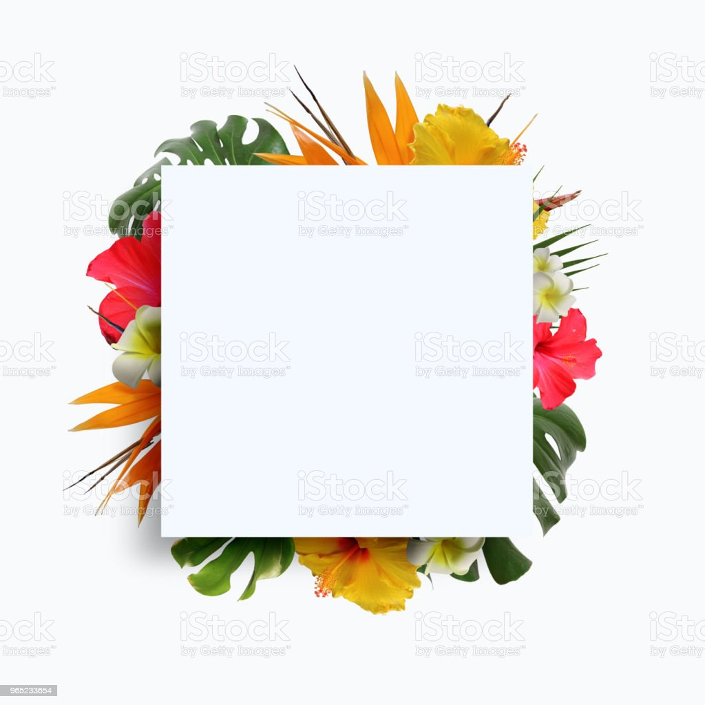 summer sale frame & background royalty-free stock photo