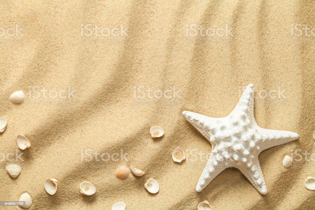Summer, Sand Background with Starfish and Shells stock photo