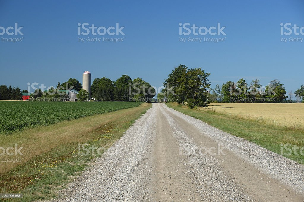 Summer scene in Ontario countryside road near London stock photo