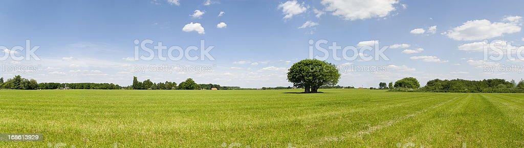 Summer Scenic Panorama stock photo