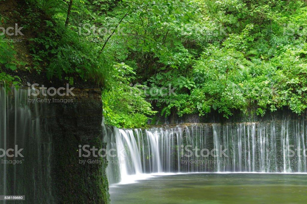 夏白糸の滝 ストックフォト