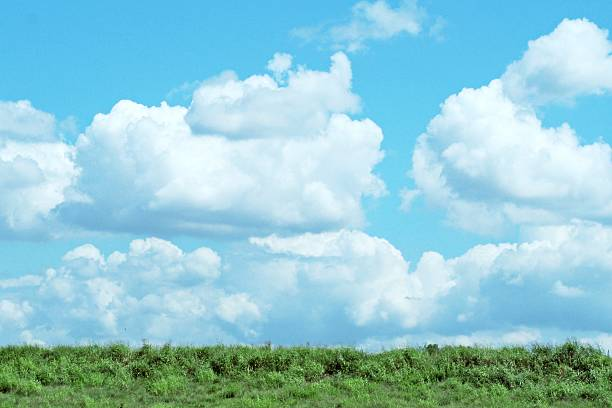 Summer sky 夏の空,日本,東京 riverbank stock pictures, royalty-free photos & images