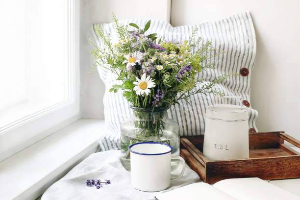 325 Daisy On Windowsill Stock Photos Pictures Royalty Free Images Istock