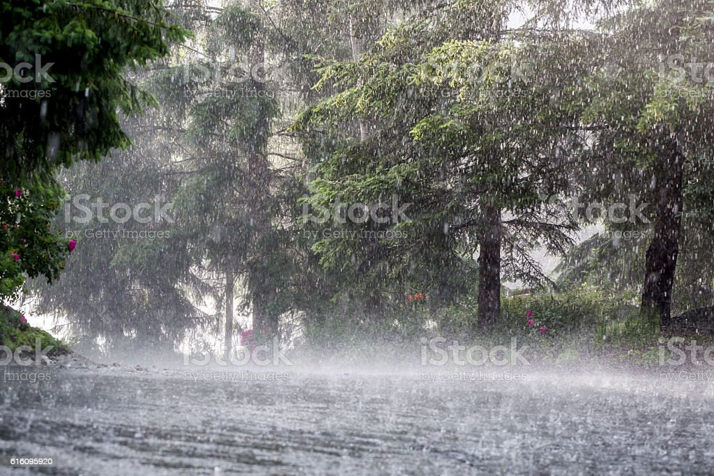 Summer storm. stock photo