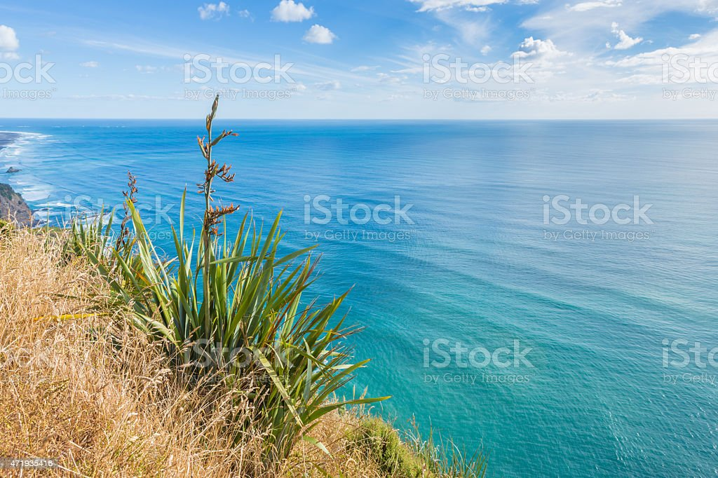 Summer sunny view of the turquoise ocean and flowering grass stock photo