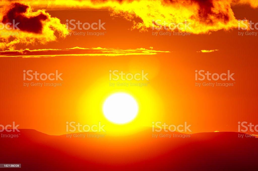 Summer Sunset Close up stock photo