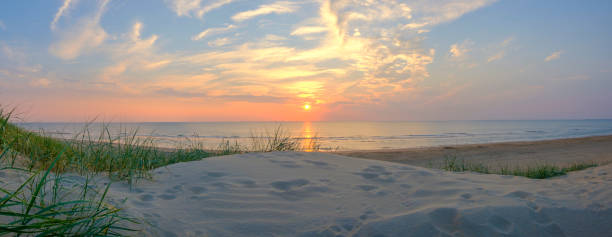 북 해 해변에서 모래 언덕에서 여름 일몰 - 사구 지형 뉴스 사진 이미지