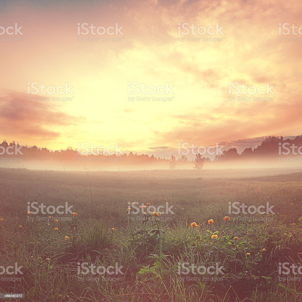 summer sunset landscape fantastic stock photo