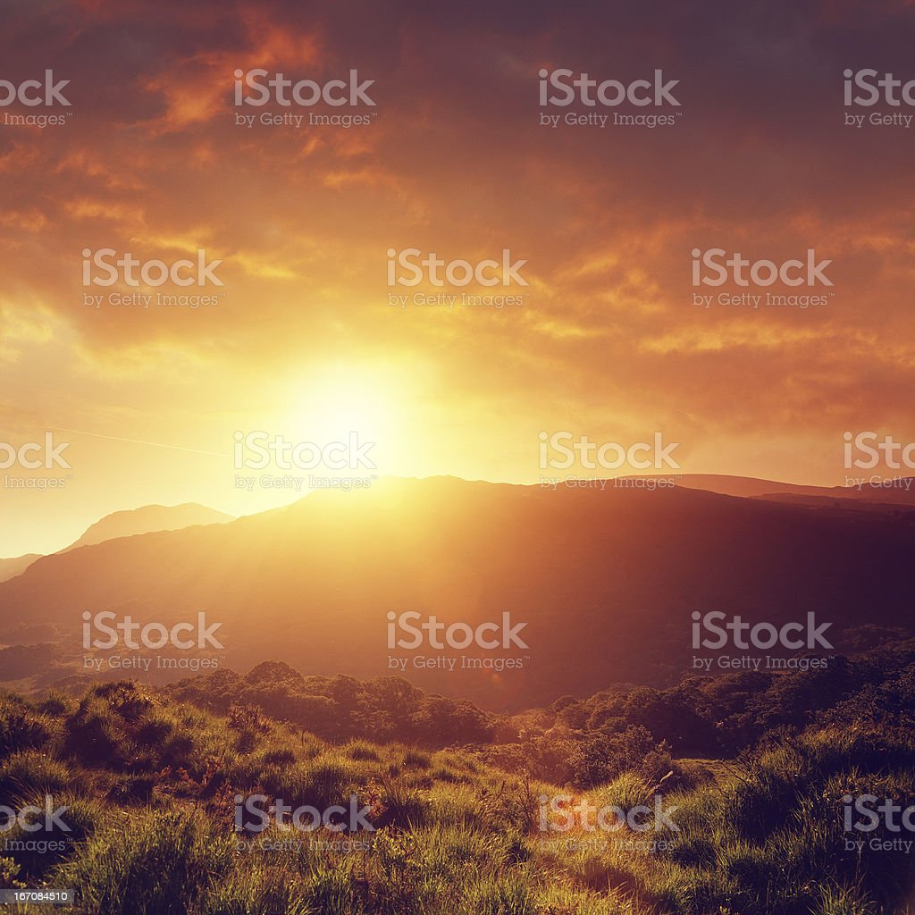 Summer sunset stock photo