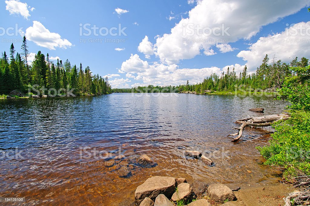 Summer time in the North Woods stock photo