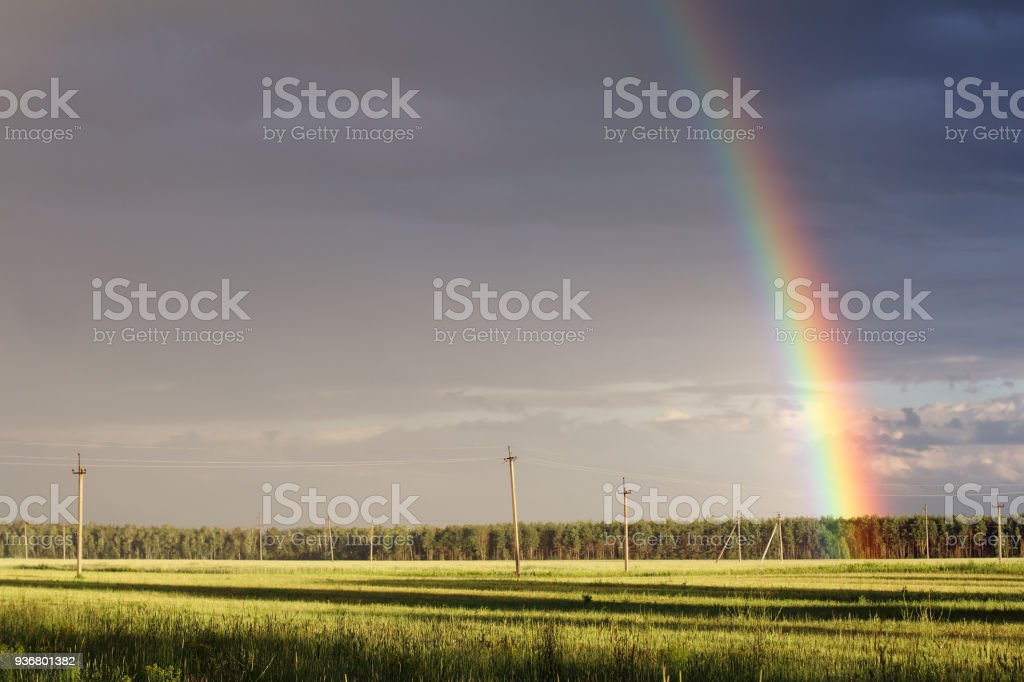 summer time of the year stock photo