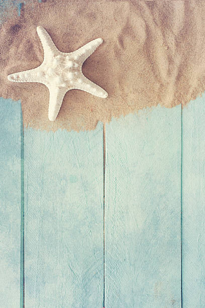 summer time with fish star stock photo