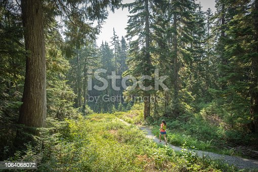 Mount Seymour Provincial Park, North Vancouver, British Columbia, Canada