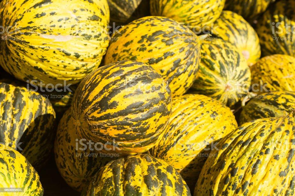 Sommer Tablett Markt Landwirtschaft Bauernhof voller Bio Melonen. Es kann als Hintergrund verwendet werden. - Lizenzfrei Agrarbetrieb Stock-Foto