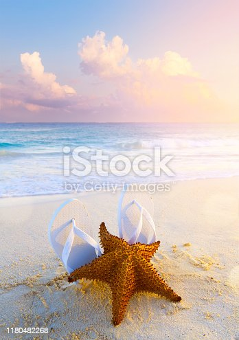 istock summer tropical beach background; starfish, sand and water edge; 1180482268