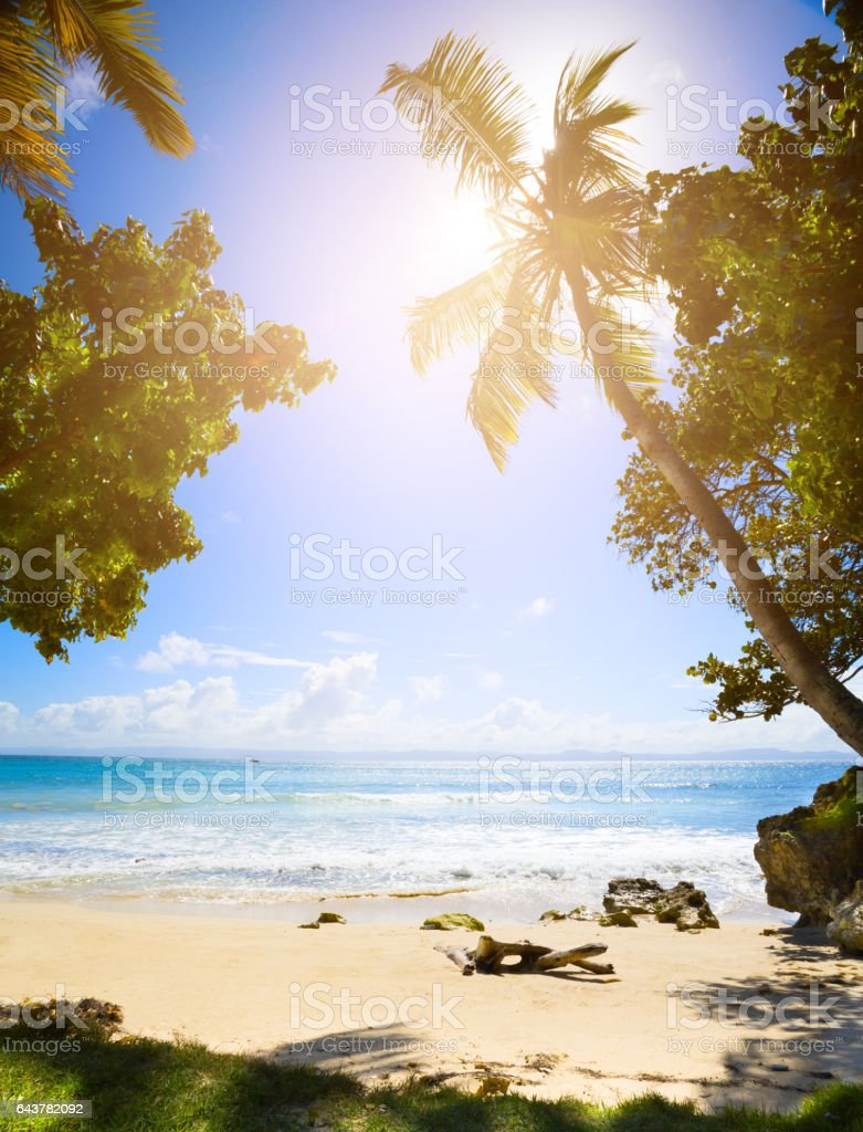 Summer tropical Beach; Peaceful vacation background stock photo