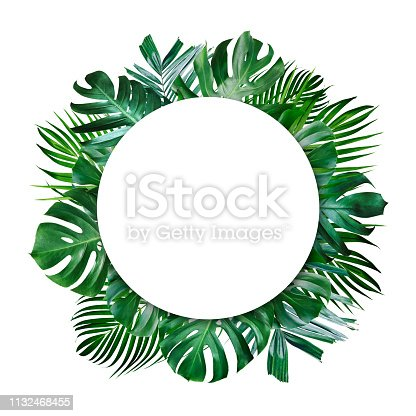 istock Summer tropical leaves and blank frame with copy space on white background 1132468455