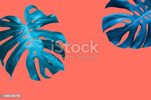 istock Summer tropical leaves background with pantone color of the year 2019 Living Coral 1095298782