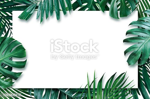 istock Summer tropical leaves with blank paper on white background 1093900412